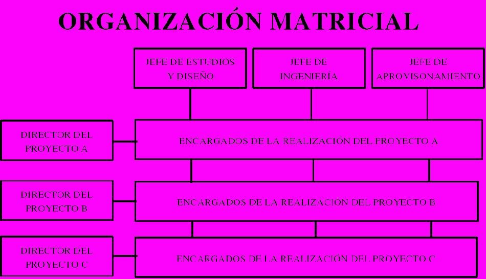 Qué Es Una Organización Matricial Ventajas Y Desventajas
