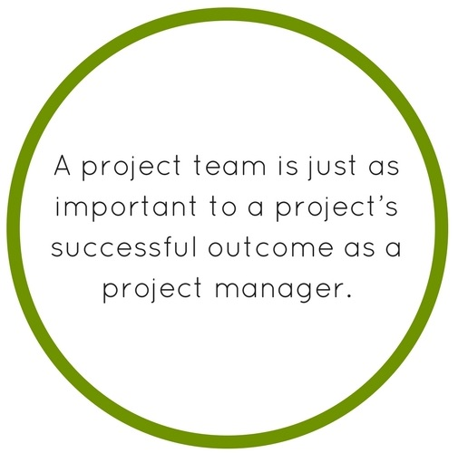 Image result for project team roles